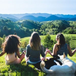 Yoga Retreat Himalayas, Spiritual Yoga Retreat India, Himalaya yoga retreat, Yoga Retreat in Dharamshala, Yoga Retreats India 2018