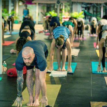 Hatha Yoga Training in India