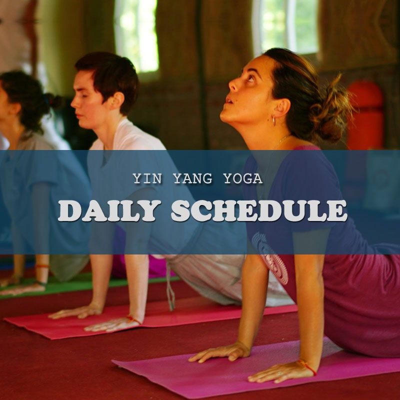 Yin Yoga Teacher Training Rishikesh, Yin Yoga Rishikesh, Yin Yoga TTC Rishikesh, Yin Yoga TTC India, Yin Yoga Teacher Training India