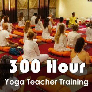 Yoga Teacher Training Scholarship in Rishikesh India