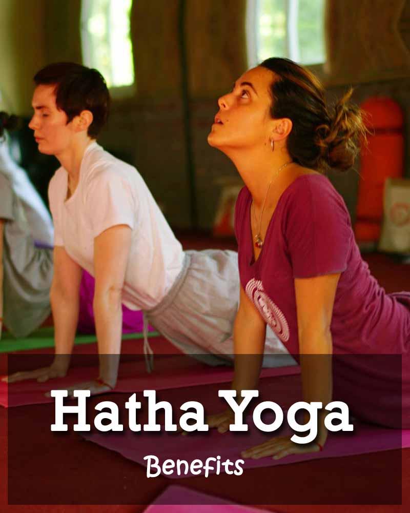 100 hour hatha yoga teacher training in rishikesh