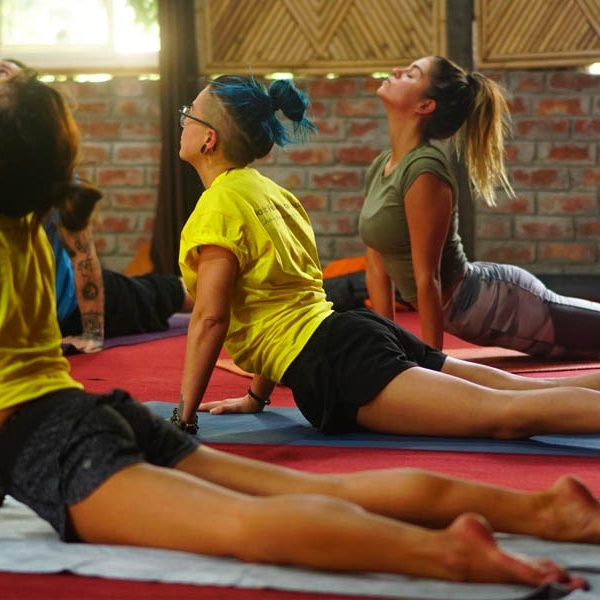 200 hours yoga teacher training rishikesh